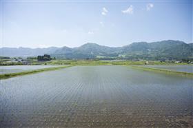 南阿蘇村の田園風景